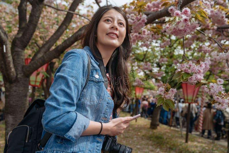 Επισκέπτης νέων κοριτσιών που στέκεται κάτω από τον κλάδο ενός κερασιού στο πάρκο την άνοιξη όμορφος ταξιδιώτης γυναικών που διαβ στοκ εικόνα με δικαίωμα ελεύθερης χρήσης
