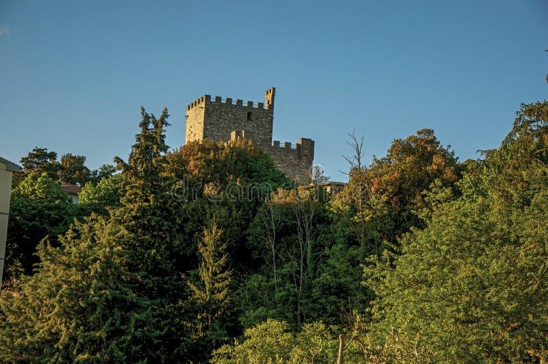 Επισκόπηση από την κορυφή ενός κάστρου μέσω ενός δάσους στη Tuscan επαρχία στοκ εικόνες
