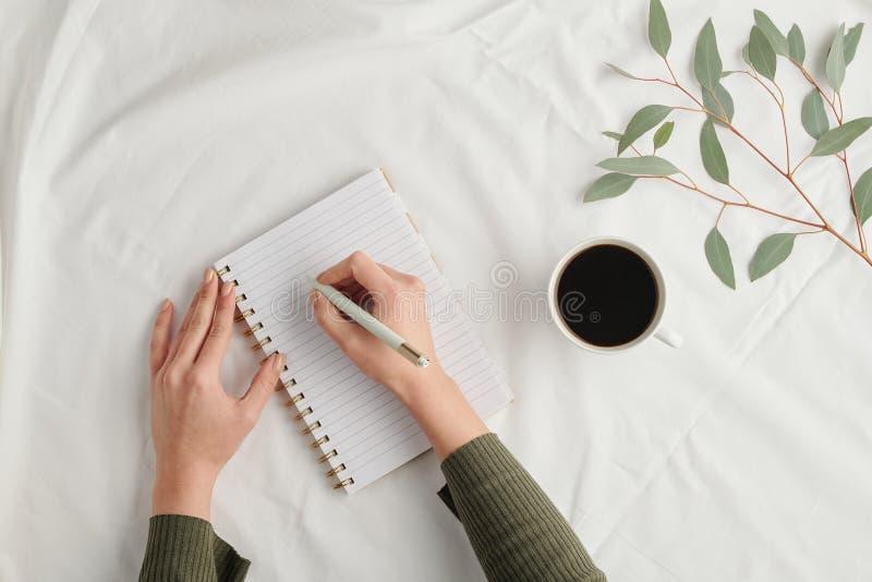 Επισκόπηση των χεριών νεαρής επιχειρηματίας με σημειώσεις γραφίδας στο σημειωματάριο στοκ εικόνες