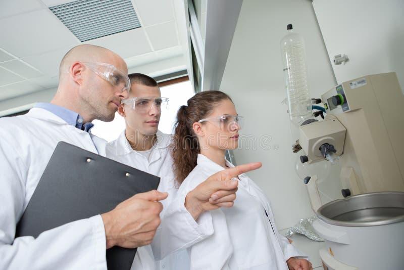 Επιστήμονες ομάδας που εργάζονται στο εργαστήριο στοκ φωτογραφίες με δικαίωμα ελεύθερης χρήσης