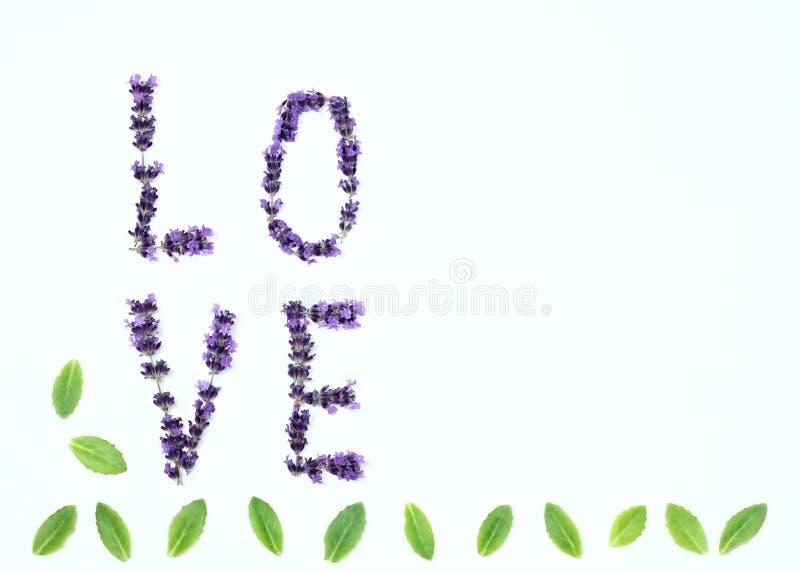 Επιστολές της αγάπης από τα φρέσκα lavender λουλούδια στοκ εικόνες