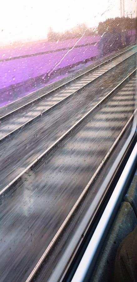 Επιταχυνόμενο τραίνο με τα ρόδινα πορφυρά λιβάδια στο υπόβαθρο στοκ φωτογραφία
