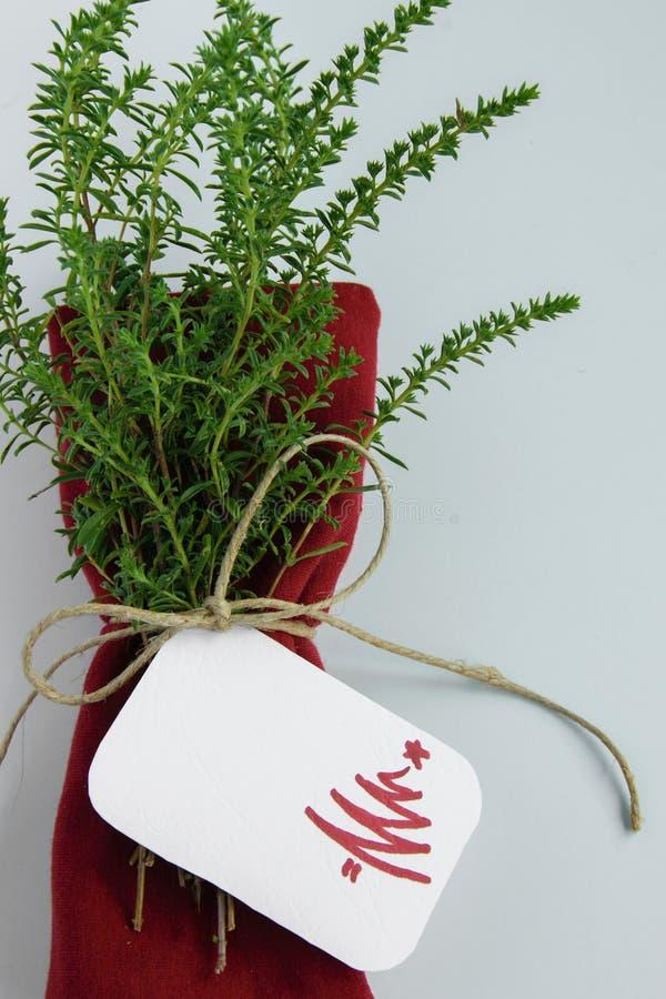 Επιτραπέζια διακόσμηση Χριστουγέννων, κόκκινη πετσέτα με τα υγιή χορτάρια και κάρτα θέσεων με το δέντρο christmass στοκ φωτογραφία