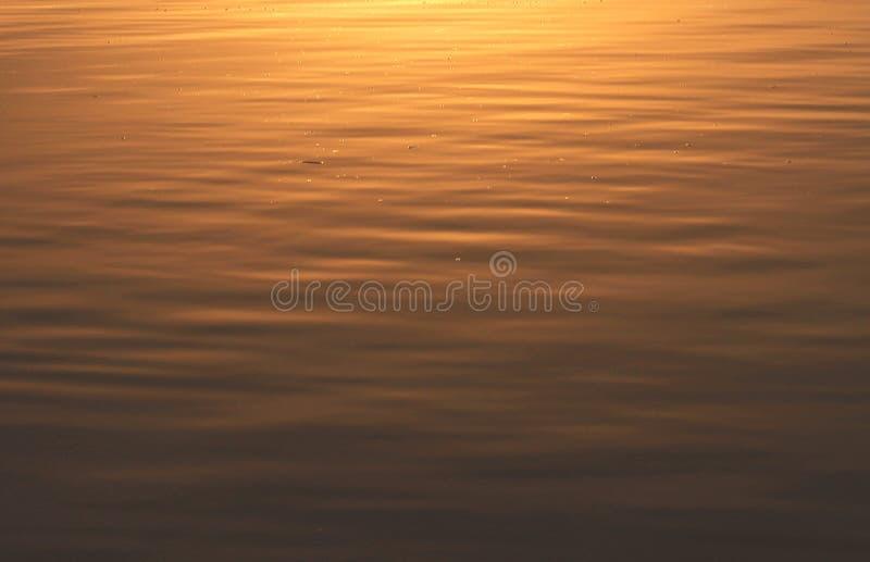 Επιφάνεια του νερού στο ηλιοβασίλεμα στοκ εικόνα με δικαίωμα ελεύθερης χρήσης