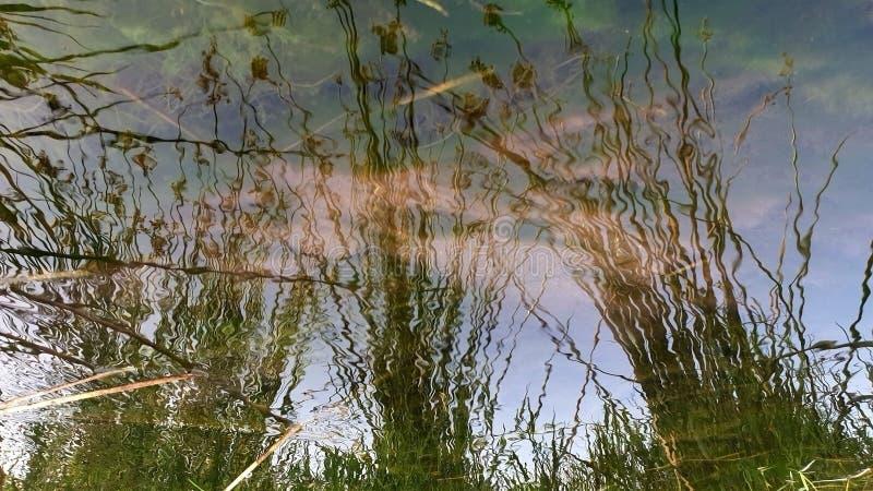 Επιφάνεια του νερού στοκ εικόνες με δικαίωμα ελεύθερης χρήσης