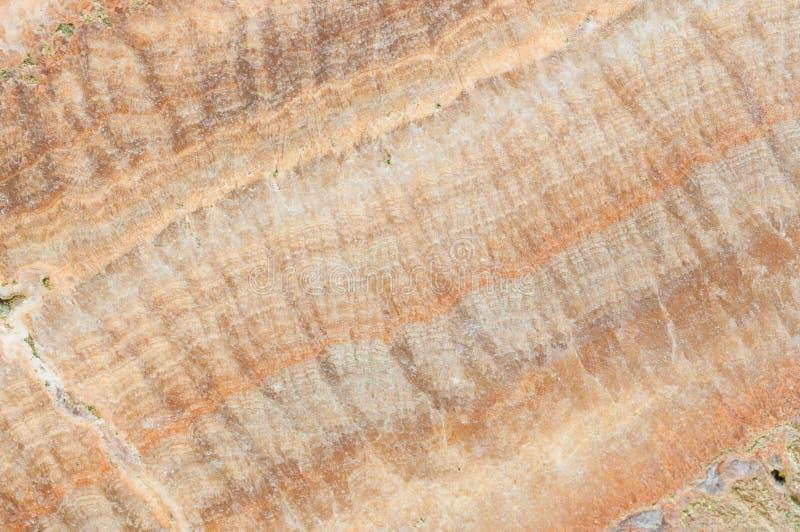 Επιφάνεια του υποβάθρου σύστασης βράχου στοκ εικόνα με δικαίωμα ελεύθερης χρήσης
