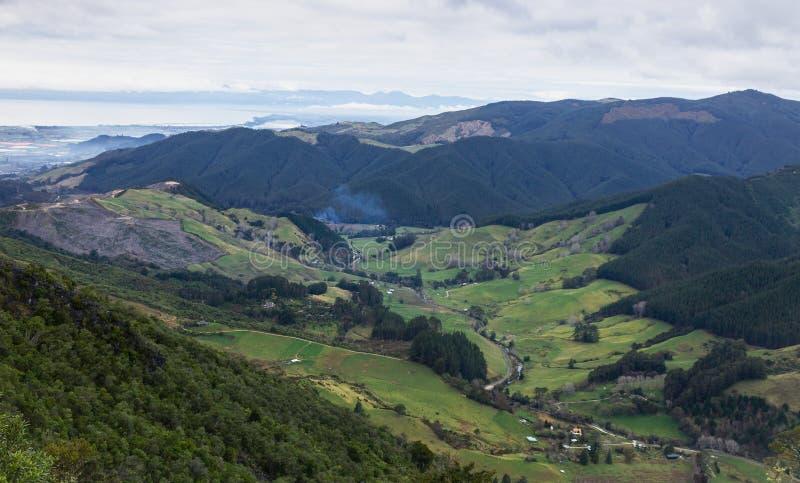Επιφυλακή Hawkes, Nelson, Νέα Ζηλανδία στοκ εικόνα με δικαίωμα ελεύθερης χρήσης