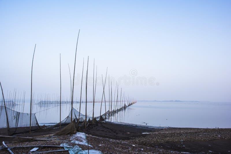 Επιφύλαξη φύσης πουλιών στη λίμνη shengjinhu anhui στη χειμερινή ομίχλη στοκ εικόνα