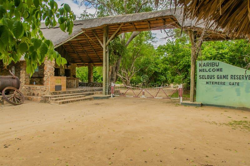 Επιφύλαξη παιχνιδιού της Τανζανίας - Selous στοκ εικόνες με δικαίωμα ελεύθερης χρήσης