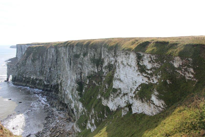 Επιφύλαξη φύσης απότομων βράχων Bempton, τοπίο της ακτής του Γιορκσάιρ με τα θαλασσοπούλια που περιβάλλουν από την άκρη απότομων  στοκ εικόνες