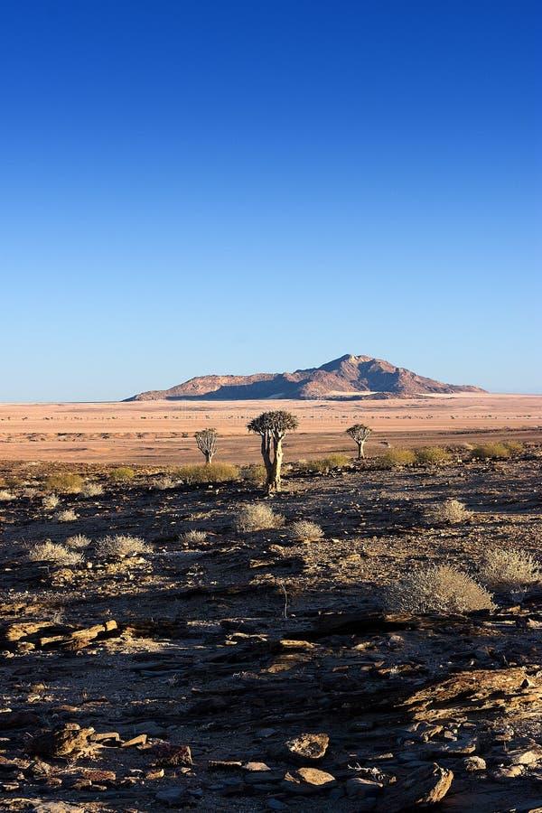 Επιφύλαξη φύσης Naukluft, έρημος Namib, Ναμίμπια στοκ εικόνες