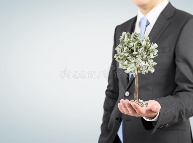 Επιχειρηματίας με ένα μικροσκοπικό δέντρο δολαρίων, γκρίζο στοκ εικόνες