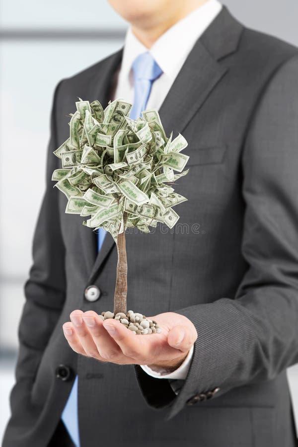 Επιχειρηματίας με ένα μικροσκοπικό δέντρο δολαρίων στοκ φωτογραφίες