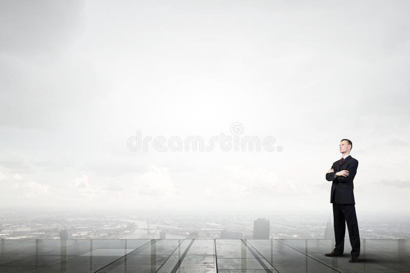 επιχειρηματίας σκεπτικό&s στοκ φωτογραφία με δικαίωμα ελεύθερης χρήσης