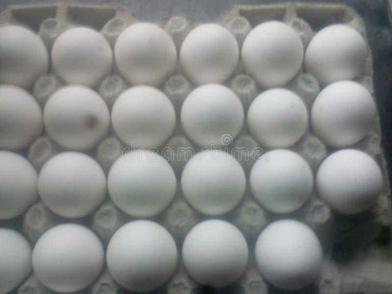 Επιχειρησιακά τρόφιμα καταστημάτων αυγών στοκ φωτογραφία