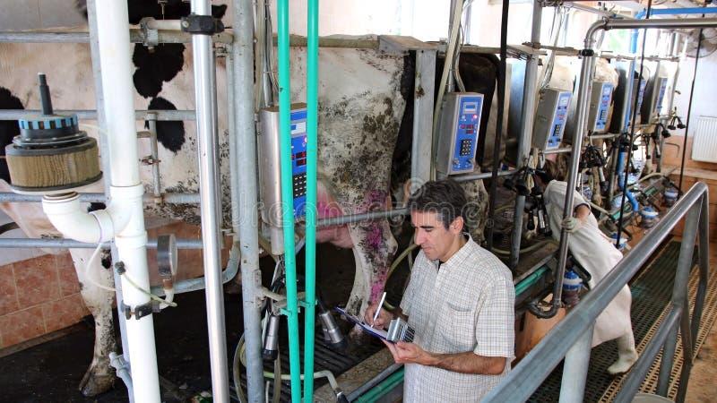 επιχειρησιακή γαλακτοκομική διαχείριση στοκ εικόνες με δικαίωμα ελεύθερης χρήσης
