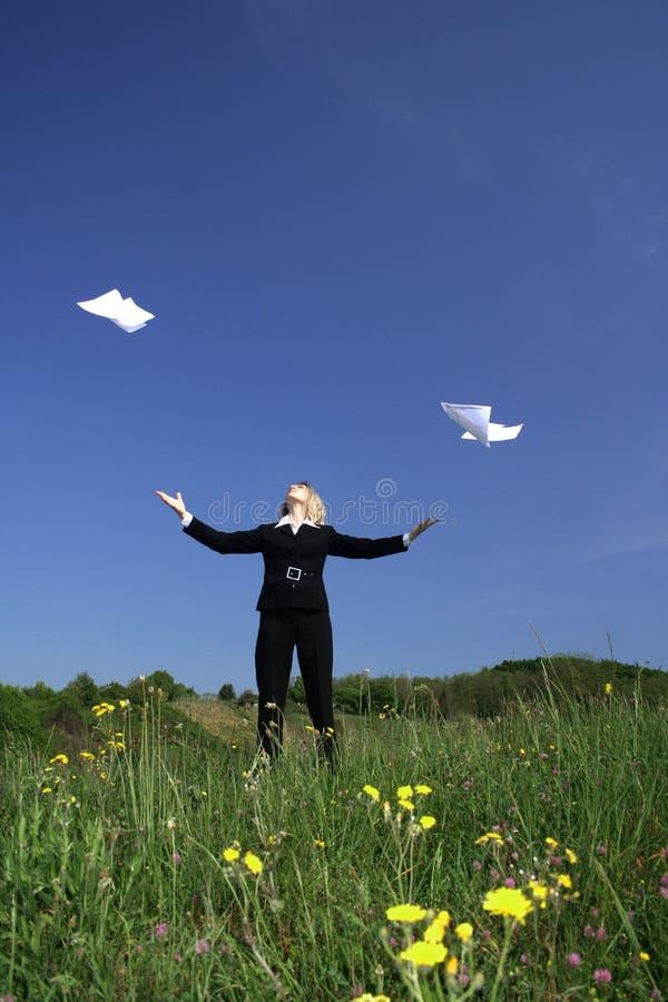 επιχειρησιακή φύση στοκ φωτογραφία με δικαίωμα ελεύθερης χρήσης