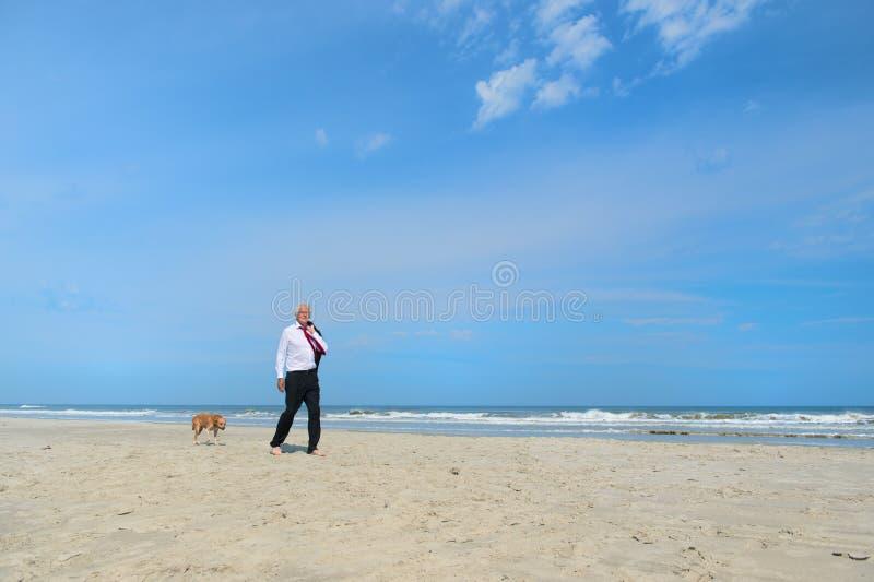 Επιχειρησιακό άτομο με το σκυλί στην παραλία στοκ φωτογραφίες με δικαίωμα ελεύθερης χρήσης