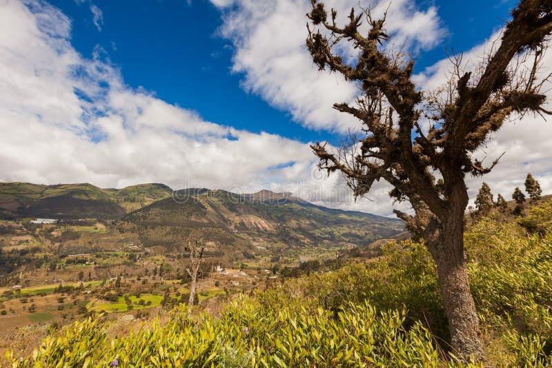 Επιλογές βουνών των Άνδεων, Νότια Αμερική στοκ φωτογραφία