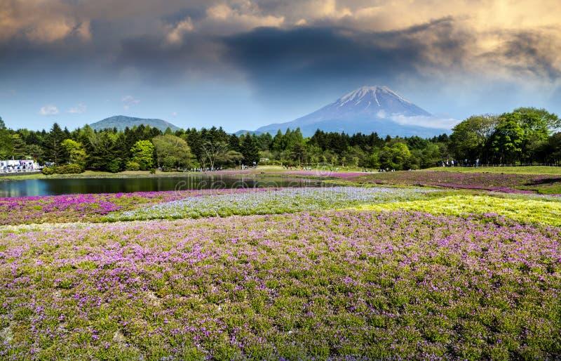 Εποχή άνοιξης στην Ιαπωνία με το βουνό fuji ως υπόβαθρο στοκ φωτογραφίες με δικαίωμα ελεύθερης χρήσης