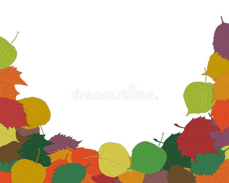 Εποχιακά πλαίσιο ή σύνορα υποβάθρου φθινοπώρου με τα ζωηρόχρωμα συρμένα χέρι πεσμένα φύλλα, το σφένδαμνο, τη σημύδα, τη βαλανιδιά διανυσματική απεικόνιση