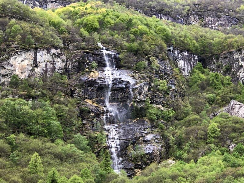 Εποχιακός καταρράκτης στο χωριό Cevio η κοιλάδα Maggia ή Valle Maggia ή το Maggiatal στοκ φωτογραφίες με δικαίωμα ελεύθερης χρήσης
