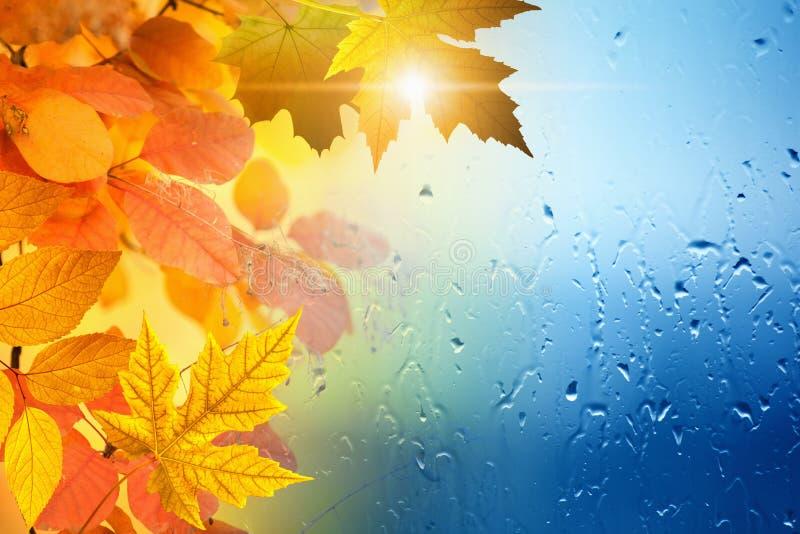 Εποχιακό υπόβαθρο φθινοπώρου στοκ εικόνες με δικαίωμα ελεύθερης χρήσης