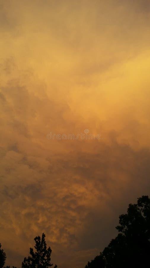 Εραστής θύελλας στοκ φωτογραφίες