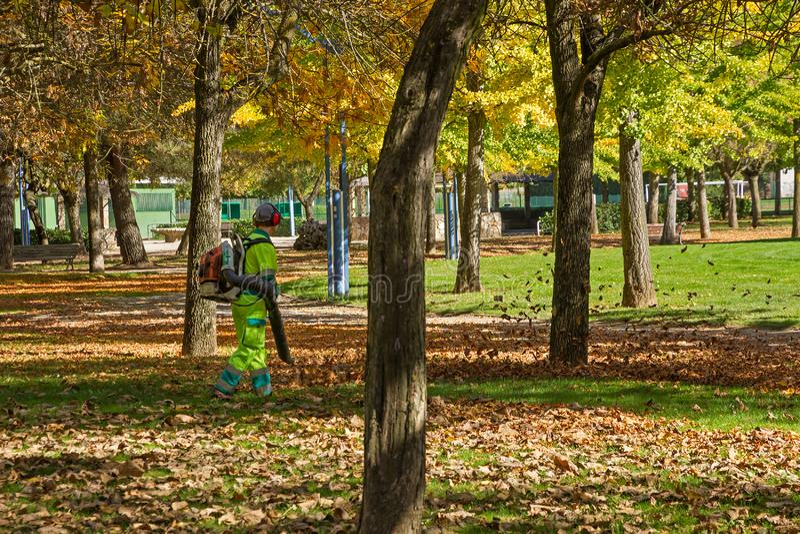 Εργαζόμενοι που καθαρίζουν τα φύλλα φθινοπώρου σε ένα πάρκο στοκ εικόνα με δικαίωμα ελεύθερης χρήσης
