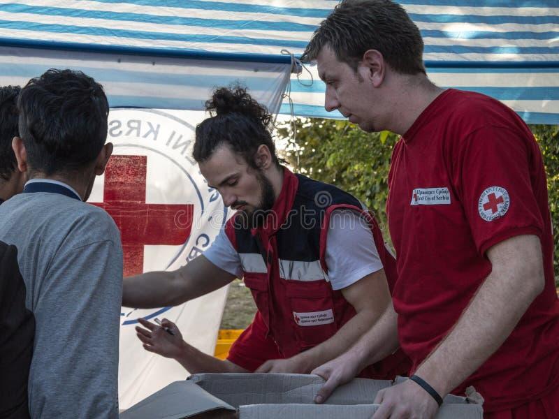 Εργαζόμενοι του Ερυθρού Σταυρού της Σερβίας Crveni Krst Srbije που παρέχει την ενίσχυση στα σύνορα μεταξύ της Σερβίας & της Κροατ στοκ εικόνα