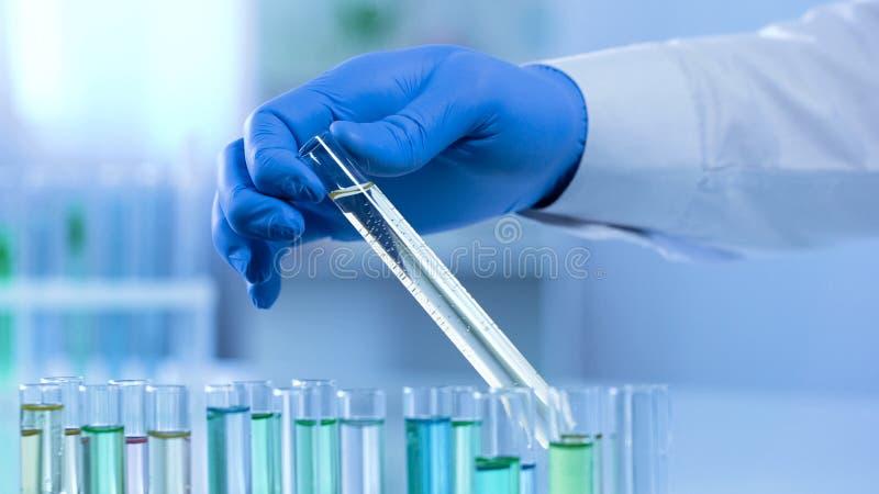 Εργαζόμενος εργαστηρίων που παίρνει τις αλλαγές προσοχής σωλήνων δοκιμής ουσιαστικά, επιστημονικό πείραμα στοκ εικόνα