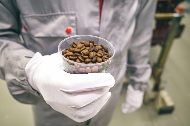 Εργαζόμενος παραγωγής που κρατά ένα πλαστικό φλυτζάνι με τα φασόλια καφέ στοκ εικόνες με δικαίωμα ελεύθερης χρήσης