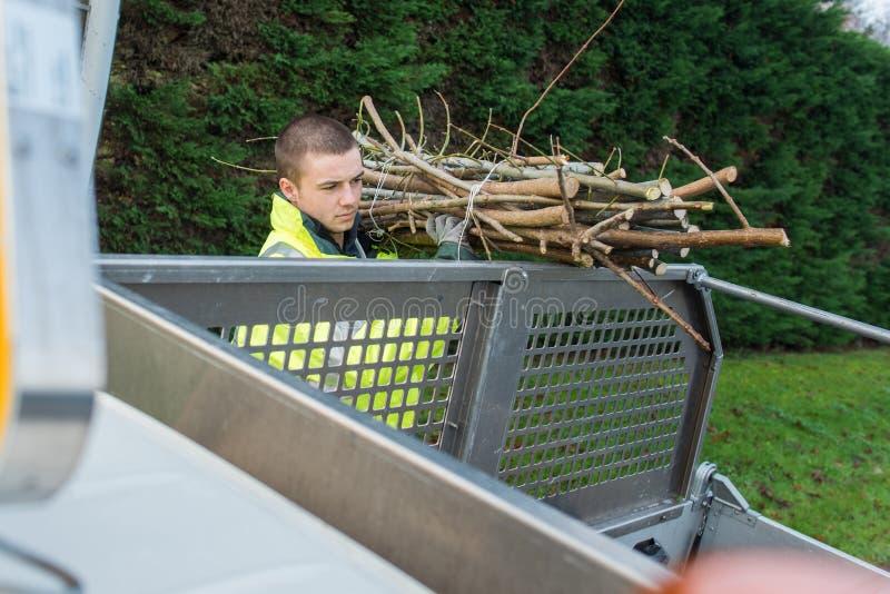 Εργαζόμενος που βάζει τους κλάδους δέντρων στο φορτηγό στοκ εικόνες
