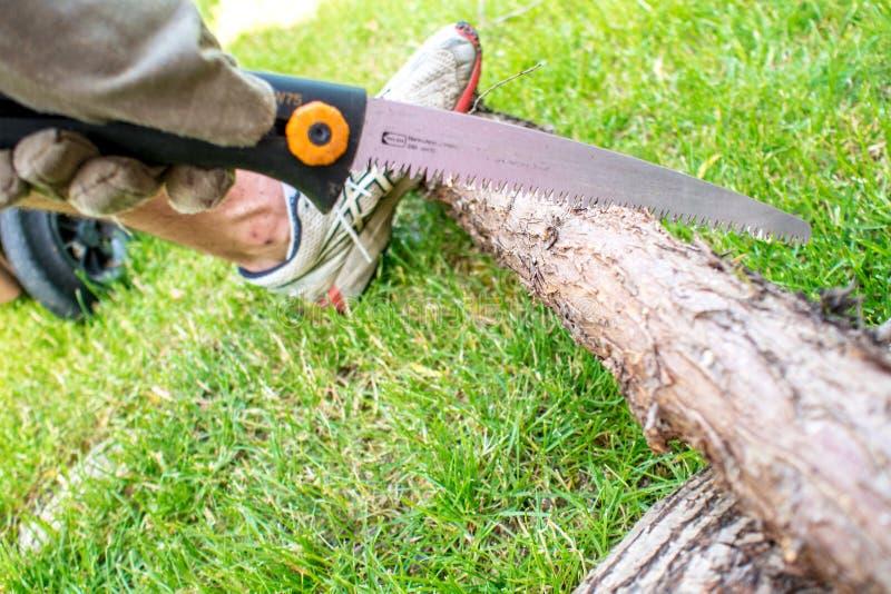 Εργαζόμενος στον κήπο, ένα Mann που πριονίζει ένα κούτσουρο του ξύλου στοκ φωτογραφία