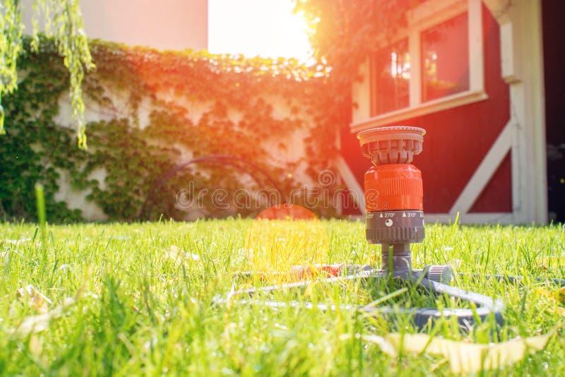 Εργαζόμενος στον κήπο, εγκαταστάσεις ποτίσματος με τη μάνικα κήπων στοκ φωτογραφία
