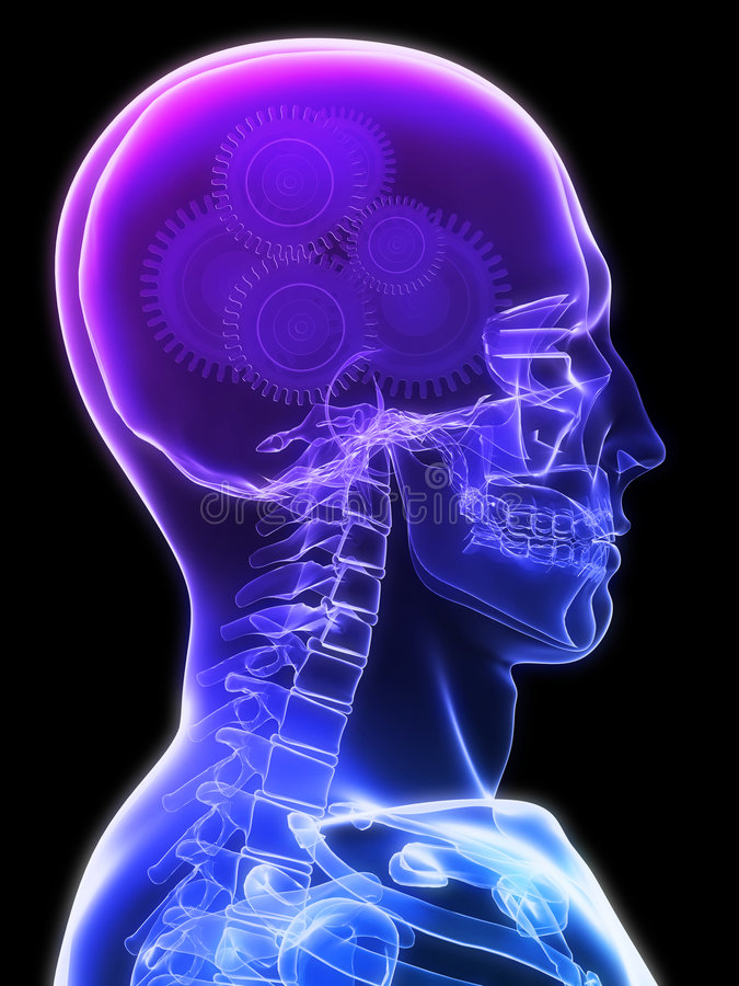 εργαλεία εγκεφάλου απεικόνιση αποθεμάτων