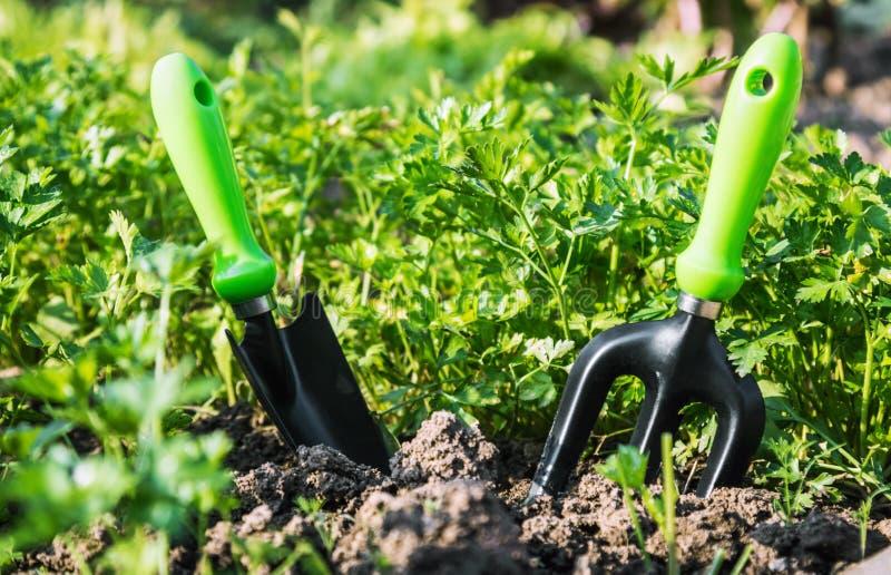 Εργαλεία κήπων που κολλιούνται στο έδαφος για να εργαστεί στοκ φωτογραφία