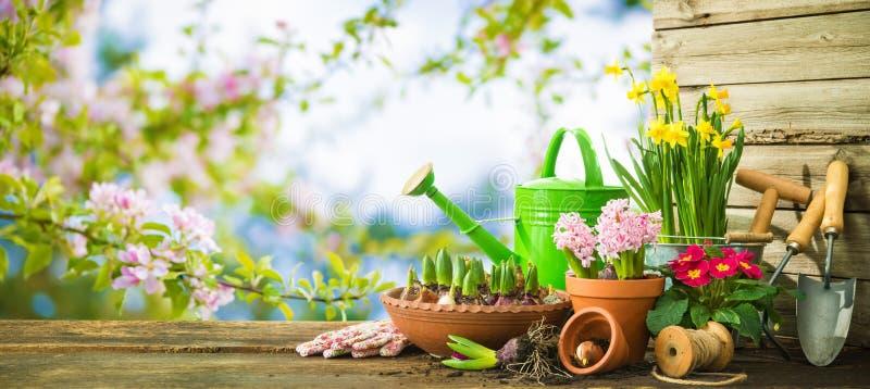 Εργαλεία κηπουρικής και λουλούδια άνοιξη στο πεζούλι στοκ φωτογραφία