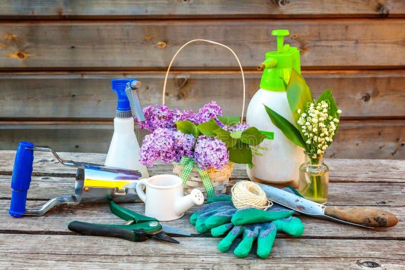 Εργαλεία κηπουρικής στο ξύλινο υπόβαθρο στοκ φωτογραφία