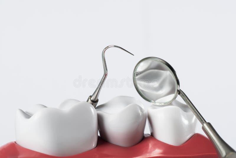 Εργαλεία οδοντιάτρων και δόντια οδοντοστοιχιών στοκ εικόνες