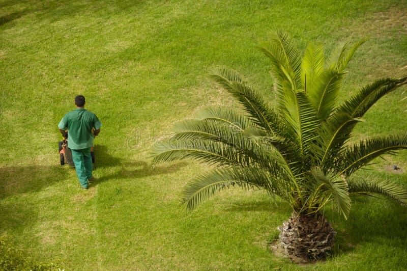 εργασία ατόμων κήπων στοκ φωτογραφία