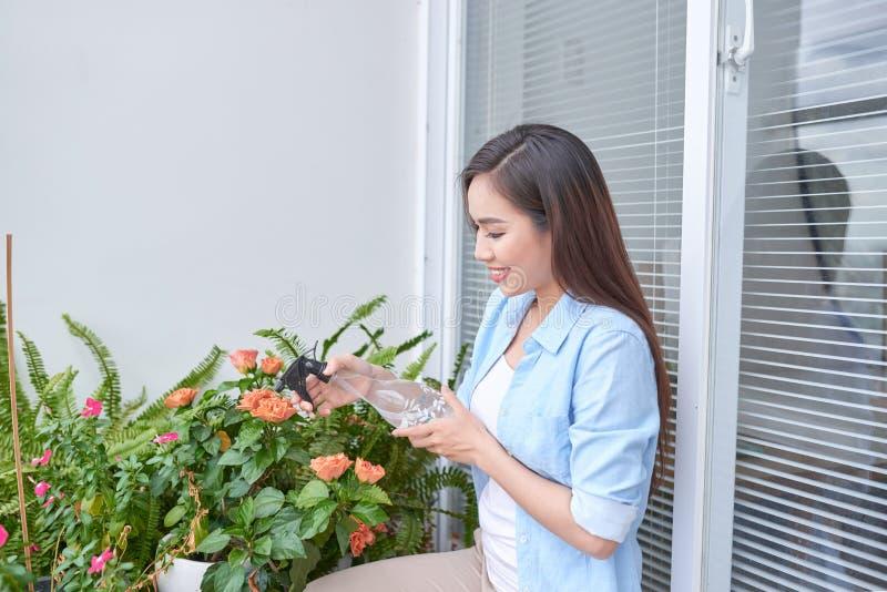 Εργασία κήπων Προστασία ενάντια στις ασθένειες και τα έντομα με τον ψεκασμό με τα προστατευτικά μέτρα στοκ φωτογραφία με δικαίωμα ελεύθερης χρήσης