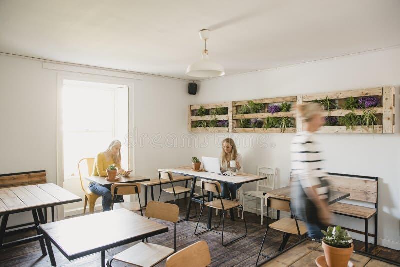 Εργασία σε έναν καφέ Διαδικτύου στοκ φωτογραφία με δικαίωμα ελεύθερης χρήσης
