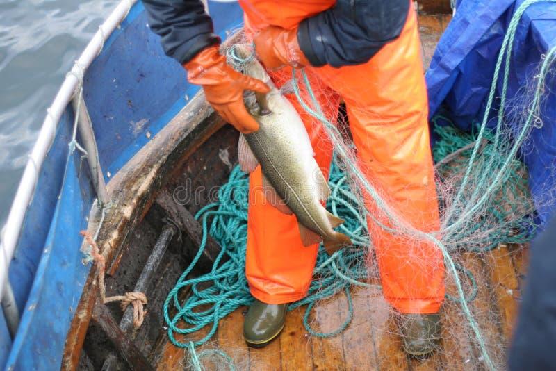εργασία ψαράδων στοκ εικόνες