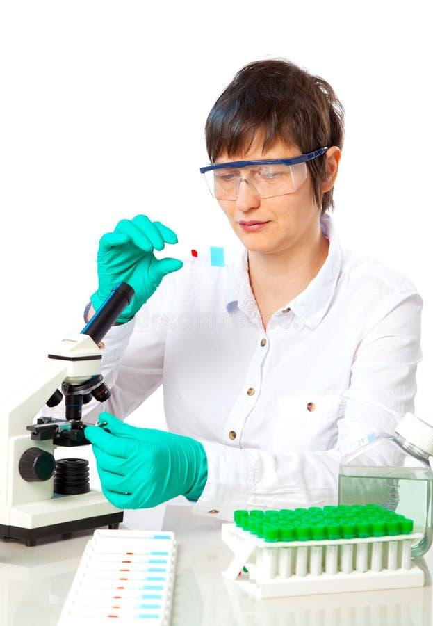 Εργασίες επιστημόνων στο εργαστήριο στοκ εικόνες με δικαίωμα ελεύθερης χρήσης
