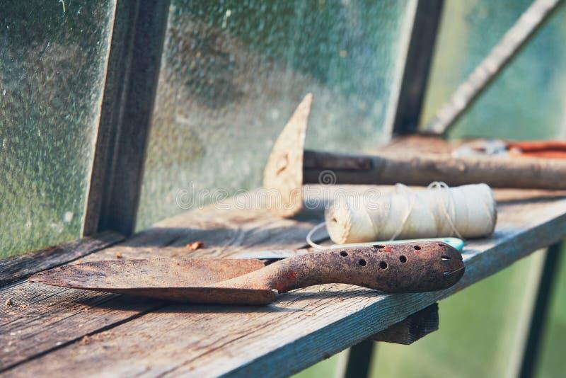 Εργαλεία κηπουρικής στο θερμοκήπιο στοκ εικόνες με δικαίωμα ελεύθερης χρήσης