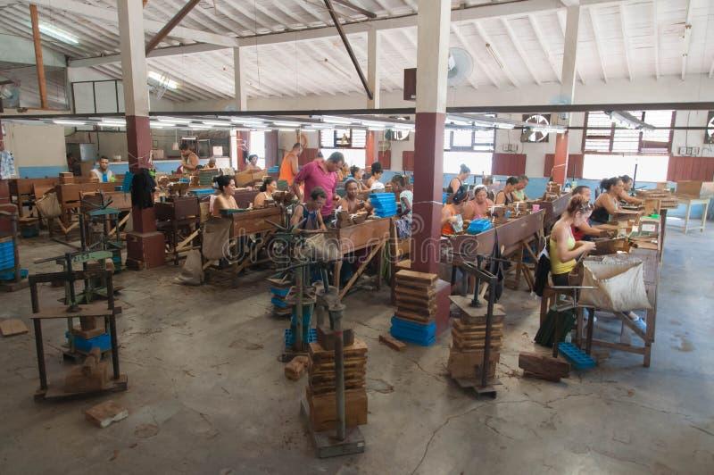 Εργοστάσιο καπνών στοκ φωτογραφία