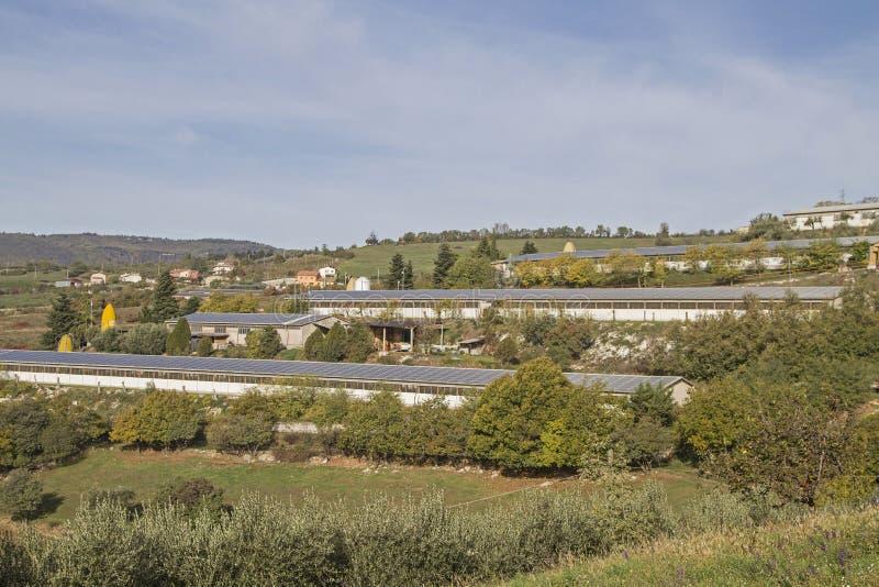 Εργοστάσιο που καλλιεργεί στο Monti Lessinis στοκ φωτογραφία με δικαίωμα ελεύθερης χρήσης