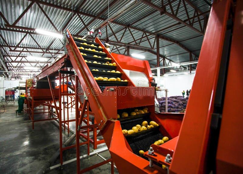 Εργοστάσιο ταξινόμησης, επεξεργασίας και συσκευασίας πατατών στοκ φωτογραφία με δικαίωμα ελεύθερης χρήσης
