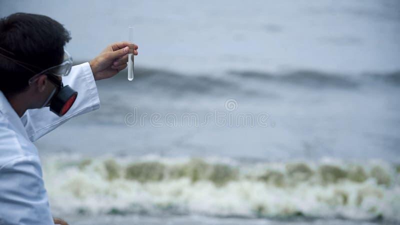 Ερευνητής εργαστηρίων που ελέγχει τη μόλυνση νερού που προκαλείται από τις διαρροές πετρελαίου, αστική απορροή στοκ φωτογραφία
